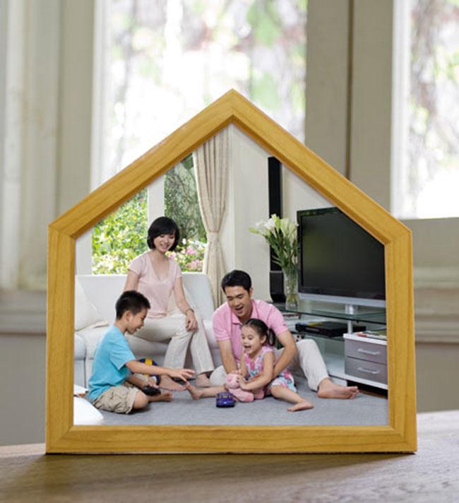 Hình ảnh tìm hiểu các cách bảo vệ ngôi nhà của bạn 2